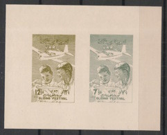 Syrie - 1958 - Block N° V28 à V29 - 1 Luxus Sheetlet - Gliding - Neuf Luxe ** / MNH / Postfrisch - Syria
