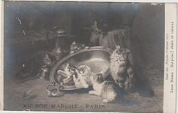 Animaux :  Chat D E Paris ! Au Bon Marché , Léon Huber  , Chat Et Cuivre - Gatti