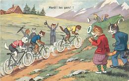 ANIMAUX CHATS FANTAISIE - COURSE DE VELO - HARDI ! LES GAS ! - Gatti