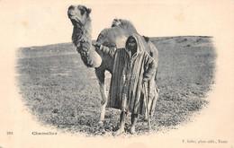 Chamelier 288 Soler - Tunisia