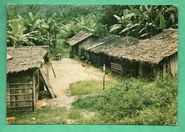 Gabon Campement En Foret - Gabun