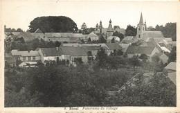 BIOUL - Panorama Du Village - Carte Circulé En 1946 - Anhée