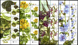 "Ukraine 2017 ""Medicinal Plants"" Set Of 3 Series. Quality:100% - Ukraine"