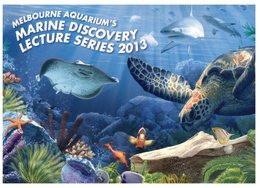 (825) Australia - AVANTI Card - QLD - VIC - Melbourne Aquarium With Tortoise And Stingray - Turtles