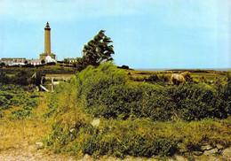 29 - Ile De Batz - Paysage De L'île Au Pied Du Grand Phare - Ile-de-Batz