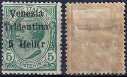 TERRE REDENTE 1918 TRENTINO ALTO ADIGE FRANC. TIPO MICHETTI SOPR. 'VENEZIA TRIDENTINA' H. 5 SU C. 5 - MLH * SASSONE 28 - Trentino