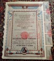 Kingdon Of EGYPT - V Rare ... SOCIETE MISR POUR L`INDUSTRIE Pharmaceutique- 1 Action - Parfums & Beauté