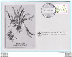 ASCENSION - FDC - Karte - 254 Farne Und Gräser - Pflanzen (2 Scan)(129485) FFF - Ascension
