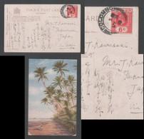 Climbing For Cocoanuts Picture Postcard CEYLON COLOMBO Censored To Japan - Ceylon (...-1947)
