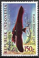 Indonesia  1975  Sc#961   150Ru  Fish  MNH   2016 Scott Value $8.50 - Indonesia