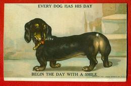 DOG DACHSHUND VINTAGE MECHANICAL POSTCARD 404 - Chiens