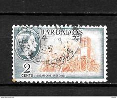 LOTE 2216  ///    COLONIAS INGLESAS - BARBADOS - Barbados (...-1966)