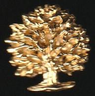 72836-Pin's.magifique Arbre.Foret.Bois.signé Mobilier Séduction - Marques