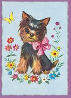 Yorkshire Terrier - Petit Noeud Rouge, Papillon Et Les Fleurs Du Jardin - Chiens