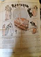 C1 Curiosa FIN DE SIECLE Journal Illustre 1895 497 Carl HAP Neumont  Port Inclus France - 1801-1900