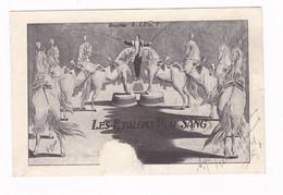 Cirque / Music-hall / Attraction, Artiste B. Legat, Les étalons Pur Sang. Rare ! - Sonstige