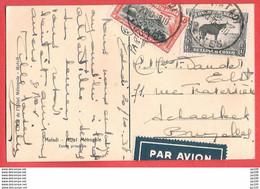 CONGO BELGE CP  Par Avion By Air Mail  Obl MATADI 20 X 1938 VersSchaerbeek + étiquette - 1923-44: Covers