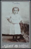 Cca 1905 Ilonka, Kislány Portréja, Keményhátú Fotó Németh Ferenc Erzsébetfalvai Műterméből, 10,5×6,5 Cm - Non Classés