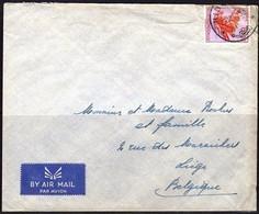 317 Sur Pli - CONGO - 1947-60: Lettres