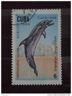 Cuba 1984 Faune Marine Cétacés Zeezoogdieren Yv. 2525 O - Used Stamps