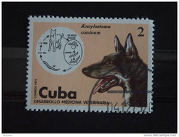 Cuba 1975 Médicine Vétérinaire Chien Hond Yv 1887  O - Used Stamps