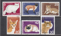 Bulgaria 1983 - Cats, Mi-Nr. 3207/12, Used - Gebraucht