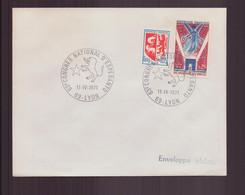 """France, Enveloppe Avec Cachet Commémoratif """" Congrès D'Esperanto """" Du 11 Mars 1971 à Lyon - Gedenkstempels"""