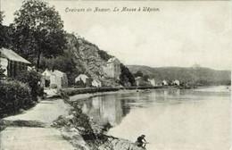 La Meuse à WEPION - Edit. : Grands Magasins De La Station, Namur - Namur