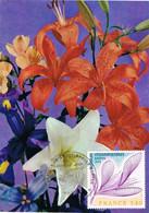 42077. Tarjeta Maxima NANTES (France) 1977.  Floralies Internationales. Fleurs, Flowers, Flores - 1970-79