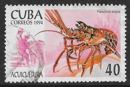 Cuba 1994. Scott #3575 (U) Aquaculture, Panulirus Argus - Used Stamps
