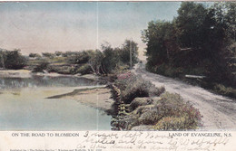 LAND OF EVANGELINE, Nova Scotia, Canada, PU-1906; On The Road To Blomidon - Other
