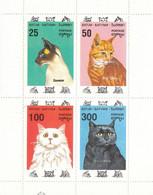 BATUM Cats 2,unused - Domestic Cats
