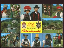 CPM Neuve Allemagne Grüss Aùs Dem Romantischer Schwarzwald Multi Vues - Other