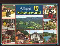CPM Neuve Allemagne Grüsse Aus Dem Romantischen Schwarzwald Multi Vues - Other