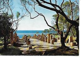 ALGERIE TIPAZA Ruines Romaines - Andere Städte