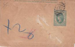 CAPE OF GOOD HOPE, HALF PEENY. ENTIER CIRCULEE CIRCA 1900.- LILHU - Cape Of Good Hope (1853-1904)