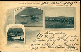 66955 Natal,stationery Post Card One Penny Circuled 1902 To Belgium,showing Transport Wagon,natal Gun During Siege - Natal (1857-1909)