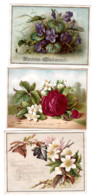 Lot De 3 Chromos Fleurs - Zonder Classificatie