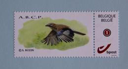Geai   ABCP - 1985-.. Vogels (Buzin)
