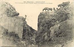 Themes Div Ref HH879- Animaux - Chevre - Chevres - Goats - Goat -charente -chevres De Marc Isaure -cliche Braun  - - Other