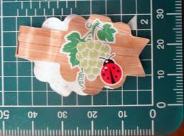 La Gaetana  Italy  Mini Etichetta Fruit Frutta   Usata - Fruits & Vegetables