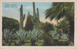 CACTUS GARDENS CAPITOL  GROUNDS, PHOENIX ,   ARIZONA - Phoenix