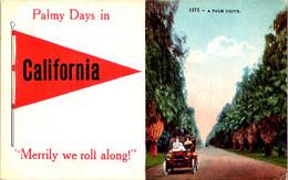 California Palmy Days Pennant Series - Autres