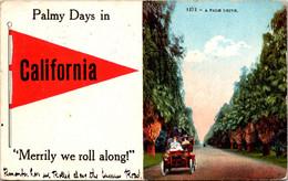 California Palmy Days 1914 Pennant Series - Autres