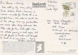 Ireland & Marcofilia, Express Delivery, Norfolk  United Kingdom  (288854) - Storia Postale