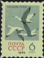 Russie URSS Timbre Fictif Autocollant Oiseau Anser Caerulescens Oie Des Neiges Scrapbooking - Scrapbooking
