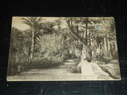 COLOMB BECHAR - UN COIN DE LA PALMERAIE ET DU BARRAGE - AFRIQUE DU NORD ALGERIE (B.V) - Bechar (Colomb Béchar)
