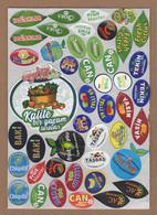AC - FRUIT LABELS Fruit Label - STICKERS LOT #137 - Fruits & Vegetables