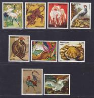 PARAGUAY N° 1272 à 1278, A632 & 633 ** MNH Neufs Sans Charnière, TB (D9624) Animaux - 1973 - Paraguay