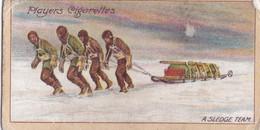 14 Sledge Team, King Edward VII Plateau -  Polar Exploration 2nd 1916 - Players Cigarette Card - Antique - - Wills